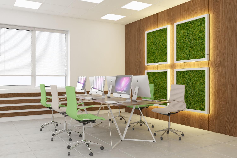 Softline - дизайн рабочей зоны. Вид 1